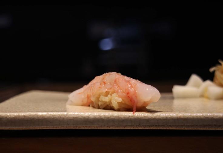 IMG_8591鮨本味